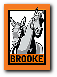 logo_the_brooke